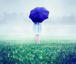 blue-umbrella-in-foggy-field